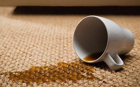 Canberra Carpet Stain Removal